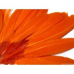 Pióra WINETOU 12-14cm 10 szt. POMARAŃCZOWE